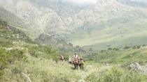 Horseback Riding in Potrerillos from Mendoza (Full Day), Mendoza, Horseback Riding