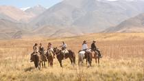 Horseback Riding in Potrerillos from Mendoza (Half Day), Mendoza, Horseback Riding