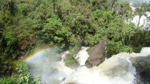 Iguazu Falls: Visit to Brazilian Side with Birds Park (Parque das Aves), Puerto Iguazu, Day Trips
