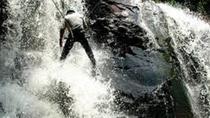 Iguazu Forest: Zip Line, Rappel and trekking in Iguazu Falls Area, Puerto Iguazu, Ziplines
