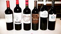 Premium Wine Tasting in Buenos Aires, Buenos Aires, Private Sightseeing Tours