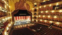 Private Buenos Aires City Tour with Colon Theatre Visit, Buenos Aires, Bus & Minivan Tours