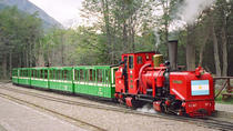 Tierra del Fuego and Beagle Channel Combo Tour by Train and Boat, Ushuaia, Day Trips