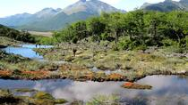 Tierra del Fuego National Park with Lapataia Bay from Ushuaia, Ushuaia, Half-day Tours