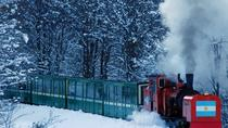 Train of the End of the World from Ushuaia (Tierra del Fuego National Park), Ushuaia, Private ...