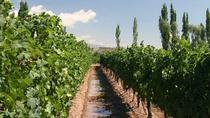 Wineries tour in Mendoza with La Carrodilla Church, Mendoza, Day Trips
