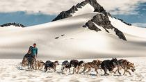 Helicopter Glacier Dog Sledding, Seward, Helicopter Tours