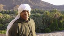 Zagora full day tour and Camel ride, Ouarzazate, Full-day Tours