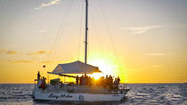 Big Mike Seadventures Cabos San Lucas Sunset Tour, Los Cabos, Day Cruises