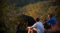 Rainbow Serpent Aboriginal Rock Art Tour, Queensland, Cultural Tours