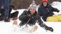 Full-Day: Ski, Snowshoe Trek, Snowmobile and Sledge Experience in Ushuaia Blanca, Ushuaia, Ski & ...