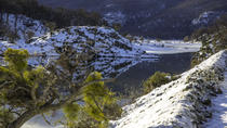 Tierra del Fuego National Park and Winter Mini-Trekking Tour, Ushuaia, Nature & Wildlife