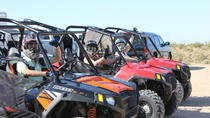 Hidden Valley and Primm Valley Extreme RZR Tour from Las Vegas, Las Vegas, White Water Rafting & ...