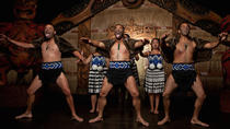 Auckland Shore Excursion: City Highlights & Cultural Performance (Private Tour), Auckland, Ports of...