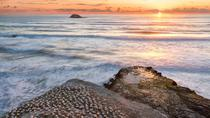Evening Sunset Eco Tour to Muriwai Beach and Gannet Colony, Auckland, Eco Tours