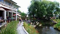 Matakana Village Eco Tour: Art Trail, Honey Centre, Wine & Chocolate Tasting, Auckland, Chocolate...