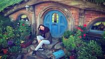 Transport to The Hobbiton Movie Set From Auckland - Early Entry Before The Rush!, Auckland, Movie &...