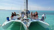 Private Catamaran Sail and Snorkel Tour in Cozumel, Cozumel, Snorkeling