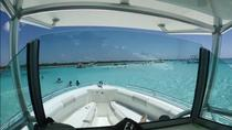 Private Marine Park Snorkel, Deep Sea Fishing and El Cielo Powerboat Charter, Cozumel, Snorkeling