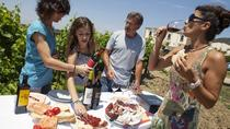 Private 6-Hour Tour of Three Etna Wineries with Tasting, Taormina, Wine Tasting & Winery Tours