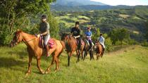 Private Horseback Riding Tour in Sicilian Countryside with Lunch at a historic Farmhouse ,...