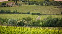 Private tour Brunello di Montalcino and Nobile di Montepulciano wine experience in Tuscany, San...