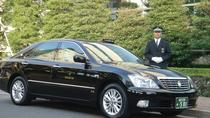 Private Airport transfer from Cairo or Giza to Cairo Airport, Cairo, Airport & Ground Transfers