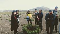 Santorini Anhydrous Croft Tour with Local Food & Wine tasting By a Local, Santorini, Half-day Tours