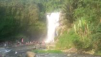 Private Tour: Ubud Nature Day Trip Including Money Forest and Balinese Dance, Kuta, Private Day ...