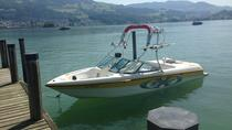 Lake of Zurich Day Boat Private Tour