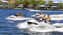 Orange Beach Waverunner Dolphin Tour, Gulf Shores, Dolphin & Whale Watching