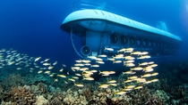 Kona U-Boot-Abenteuer und Island Breeze Luau, Big Island of Hawaii, Submarine Tours