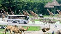 Safari World Bangkok, Bangkok, Cultural Tours