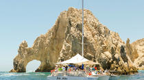 Whale Watching Tour in the Pacific Ocean, Los Cabos, Dolphin & Whale Watching