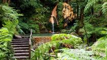 Azores Sightseeing Tour, Azores, Full-day Tours