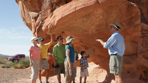 Dagtrip per luxe Tour Trekker naar de Valley of Fire, Las Vegas, Dagtrips