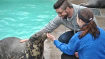 Aquarium of Niagara: Meet a Seal Experience, Niagara Falls, Attraction Tickets