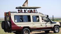 14 day Kenya Safari & Zanzibar Private Villa Rental, Nairobi, Private Sightseeing Tours