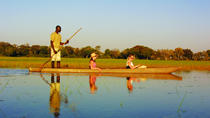 Highlights of Botswana Safari, Maun, Private Sightseeing Tours
