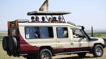 Highlights of Kenya Safari, Nairobi, Cultural Tours