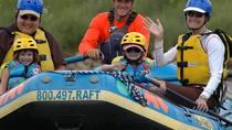 Milk Run Family Rafting Trip, Buena Vista, White Water Rafting