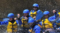 Numbers Half Day Rafting Trip with Lunch, Buena Vista, White Water Rafting & Float Trips