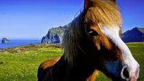 Private Golden Circle and Horse Riding Tour from Reykjavik, Reykjavik, Private Sightseeing Tours