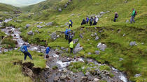 Croagh Patrick Cave and West Summit Trek from Westport Area, Westport, Hiking & Camping