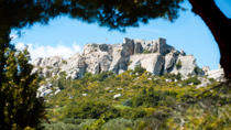 Marseille Shore Excursion: Private Tour of Les Baux de Provence, Marseille