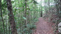 Forest Hiking, Caving and Beach Time Tour from San Juan, San Juan, Hiking & Camping