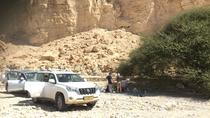KEDEM Premium Off-Road Aventura no Deserto do Negev, Jerusalem, 4WD, ATV & Off-Road Tours