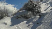 Malaga Sierra de Tejeda Mountain Hiking Private Day Trip