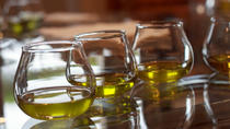 Olive Oil Plantation Small-Group Tour from Malaga with Breakfast and Tastings, Costa del Sol, ...