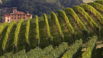 Private Tour: Piedmont Wine Tasting of the Barolo Region, Turin, Hop-on Hop-off Tours